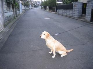 20070104_sanpo_00061.jpg