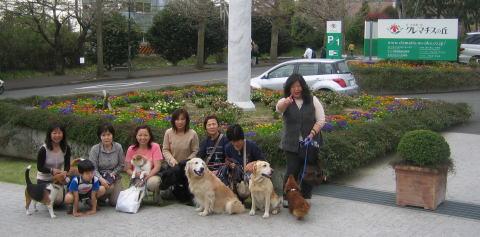 20070401_ichigo_0046r1.jpg