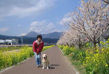 daiyusan012.jpg