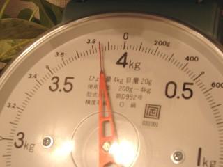 DSC052302.jpg