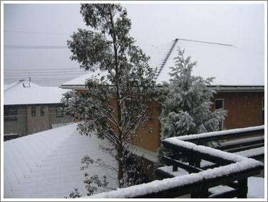 1月7日の雪