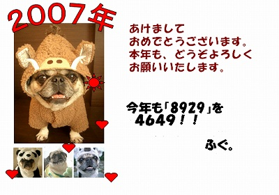 20070101201804.jpg