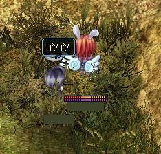 茂みで何を!?