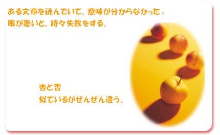 20070612224121.jpg