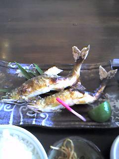 ane-kisei-3.jpg