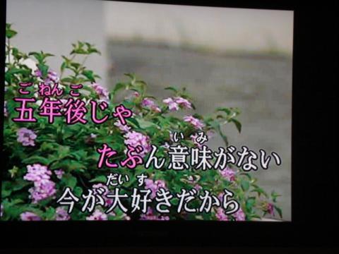 DSC03450.jpg