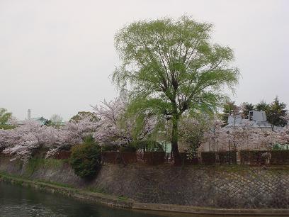 岡崎公園 外周