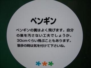 20071102212656.jpg