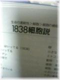 06-12-10_21-54~00.jpg