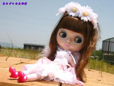 20070511121609.jpg