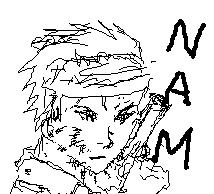 NAM.jpg
