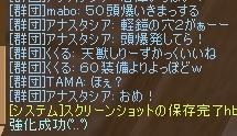 50頭成功28