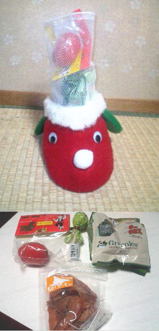 サンタさんからの贈り物☆