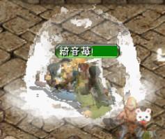 2006y04m17d_001128421.jpg