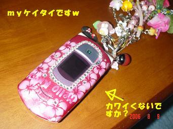 20060809194307.jpg