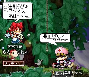 Maple0086.jpg