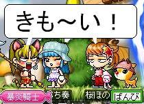 Maple1012.jpg