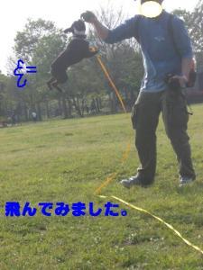20070505230627.jpg