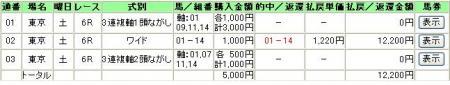 5.20東京6R