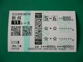 9.2新潟11R