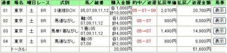 11.25東京8R