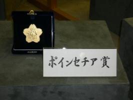 ポンセチア賞・優勝メダル