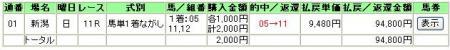 07.05.06新潟11R