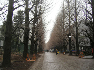 tokyo university1
