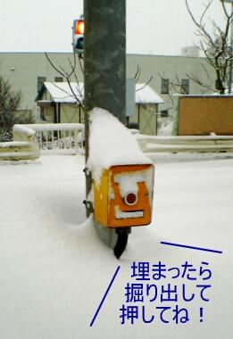 0210_01.jpg