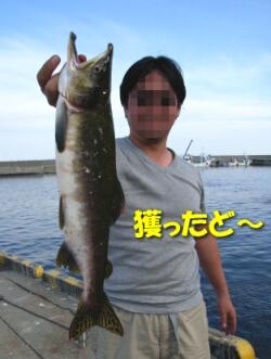 08_shiretoko4.jpg