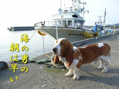 08_shiretoko7.jpg