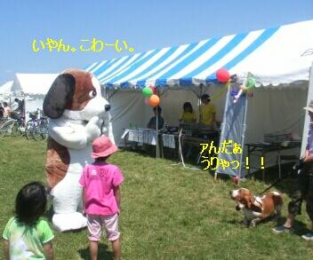 2006_7_ikaku.jpg