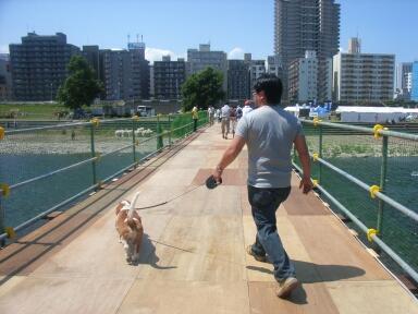 2006_7_kawamatsuri.jpg