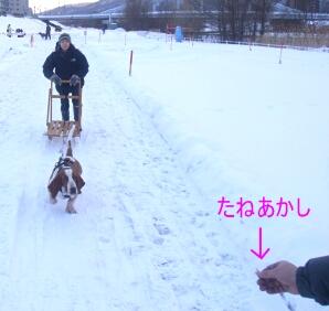 2007.01_sori2.jpg