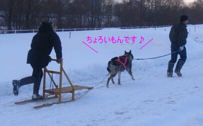 2007.01_sori3.jpg