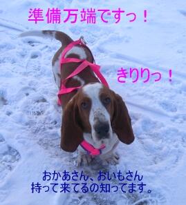 2007.01_sori4.jpg
