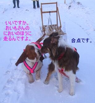 2007.01_sori5.jpg