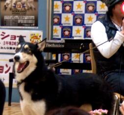 2007.04_fuji2.jpg
