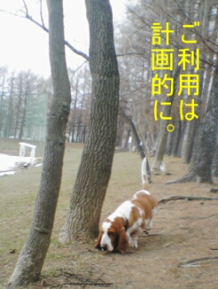 2007.04_koen1.jpg