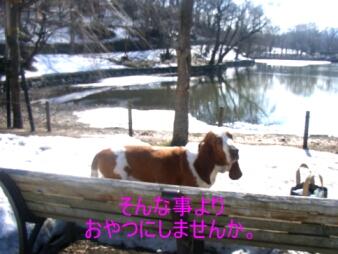 2007.04_koen3.jpg