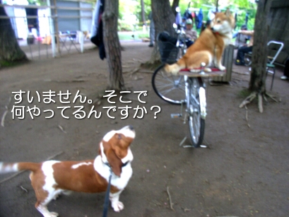 2007.05_ryota2.jpg