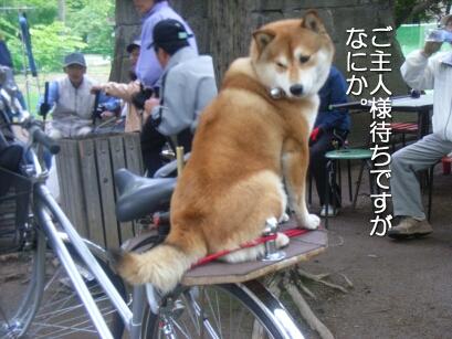 2007.05_ryota3.jpg