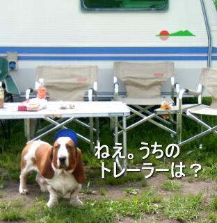 2007.06_shima4.jpg