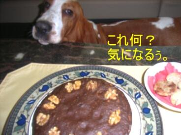 2007.06_sweets1.jpg
