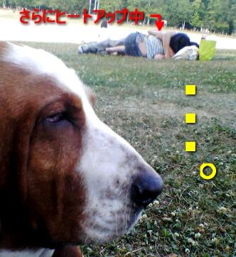 2007.07_envy2.jpg