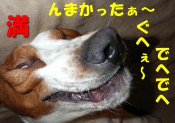 2007.09_komai7.jpg