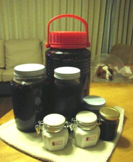 2007.10_grape13.jpg