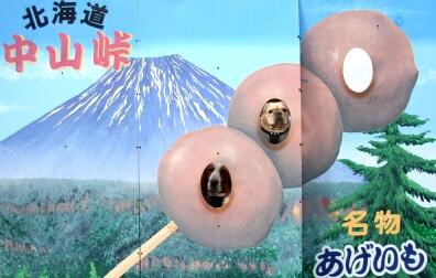 2007.10_grape3.jpg