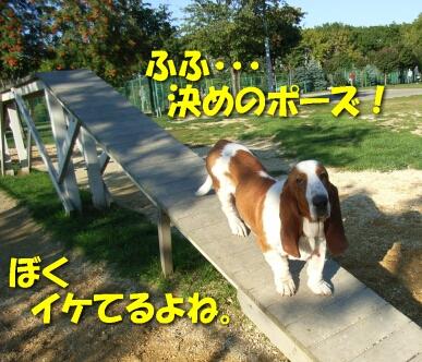 2007.10_run4.jpg
