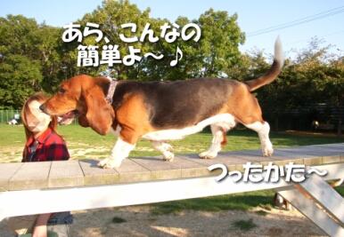 2007.10_run5.jpg